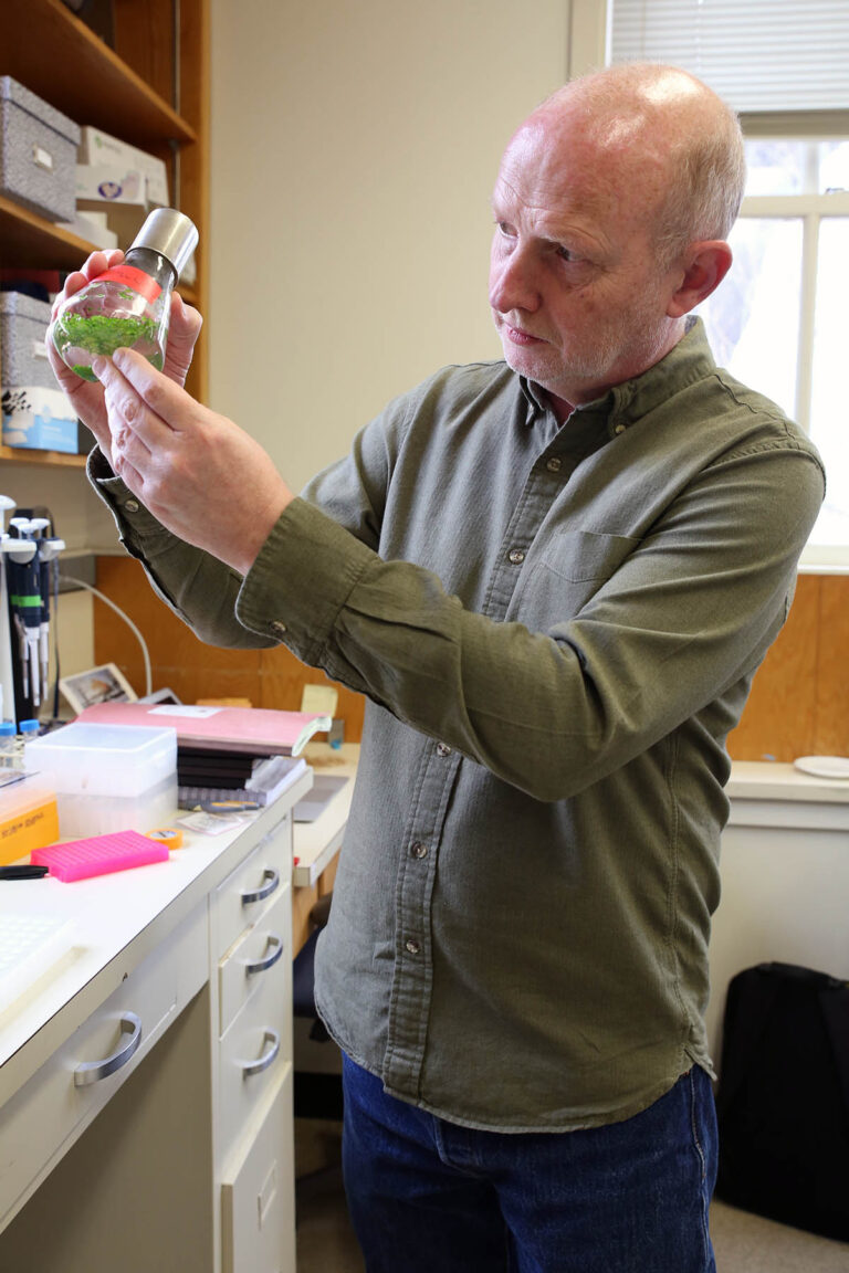 photo of Rob Martienssen in hi lab