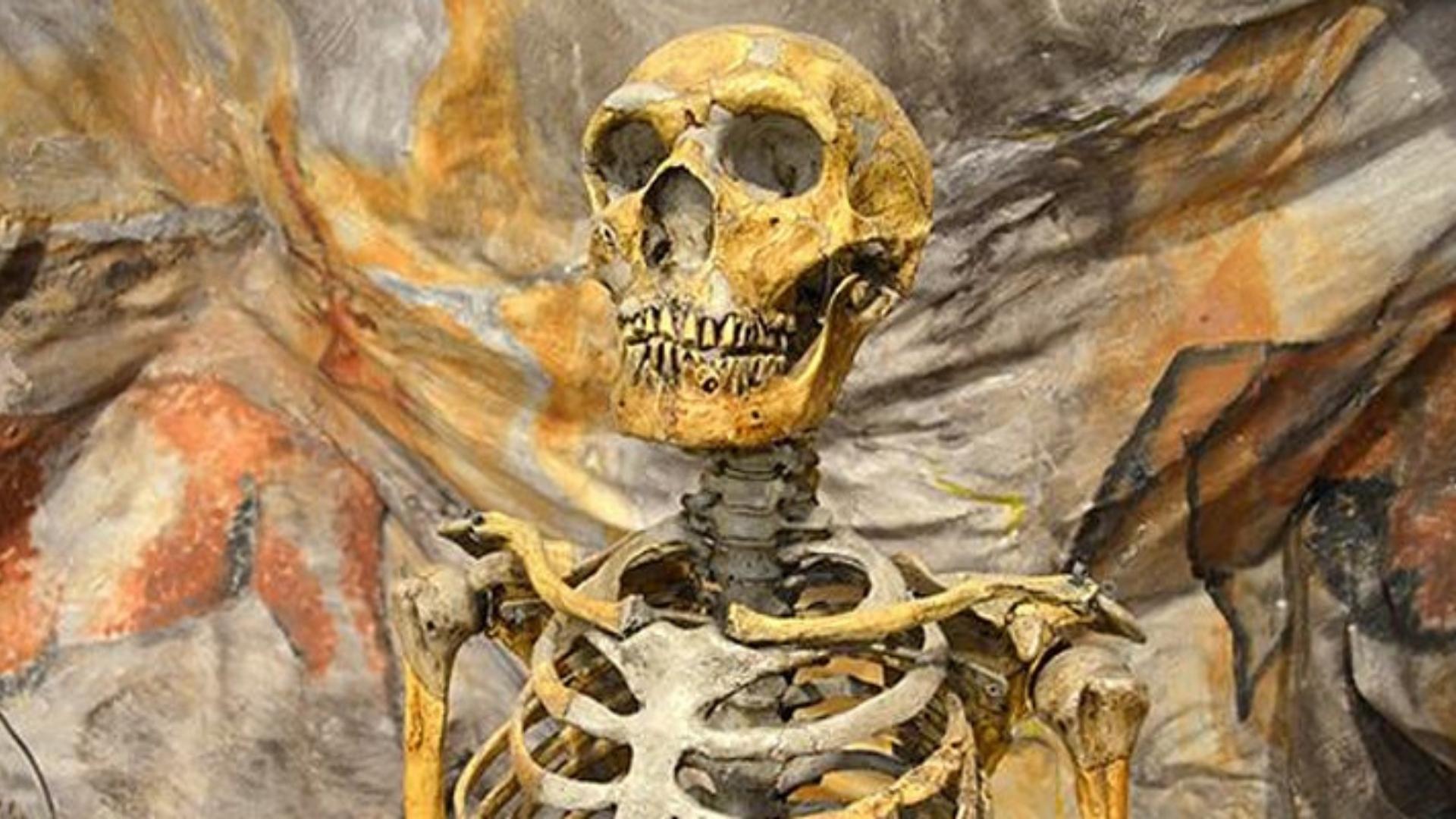 Photo of skeleton