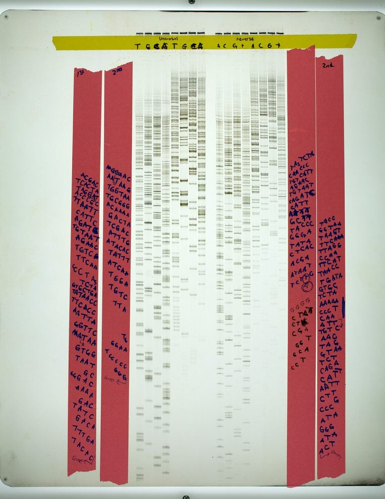 scanned image of Carol Greiders lab notebook with sequenced RNA