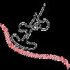 Messenger RNA diagram