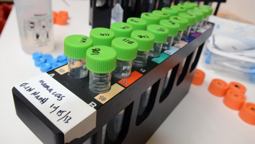 photo of test tubes in a rack on a lab bench