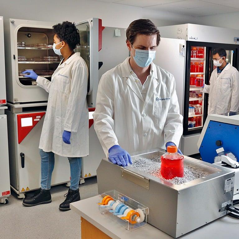 photo of three people working in the CSHL organoid facilty