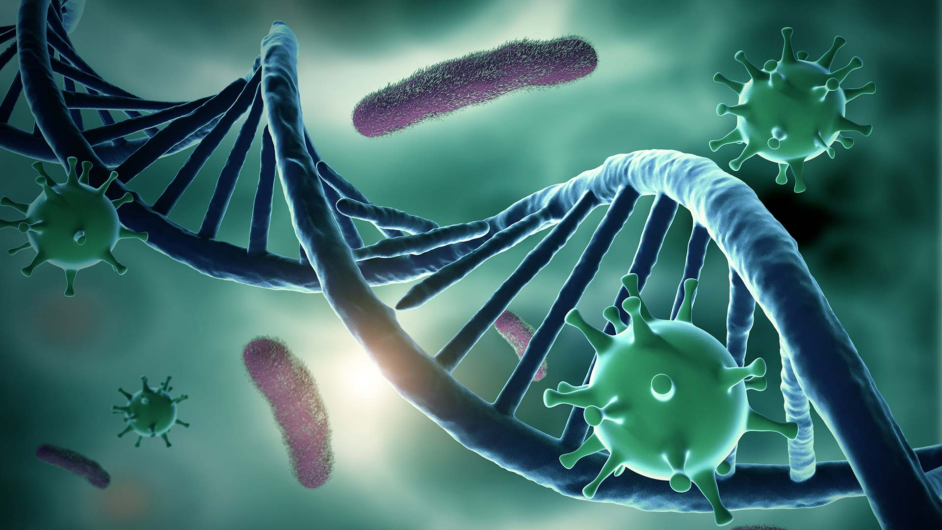 Image of DNA and viruses