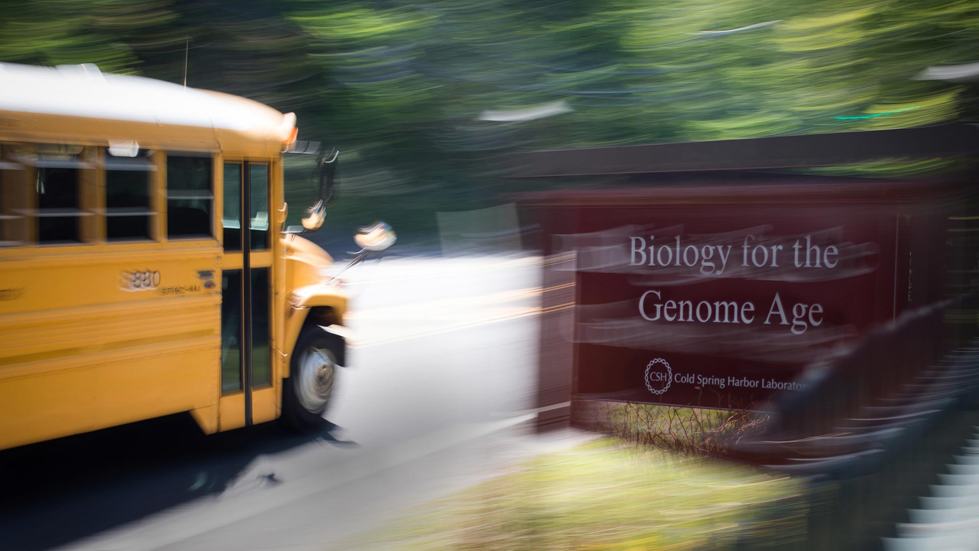 photo of a school bus passing the CSHL sign