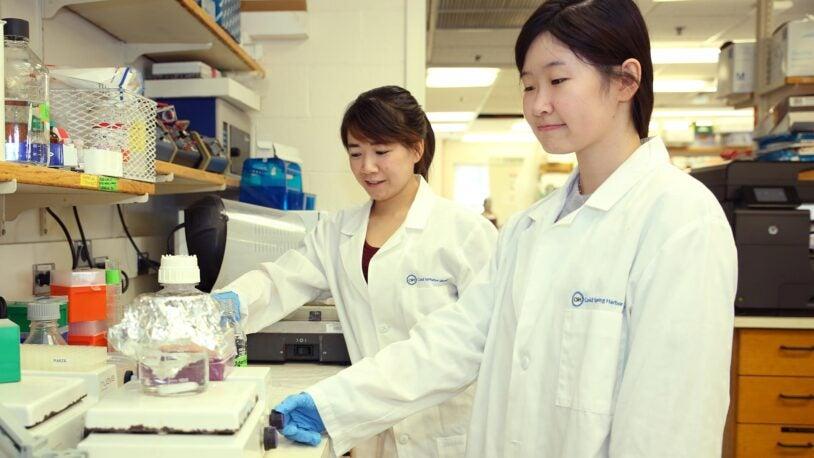 photo of postdocs working in Nick Tonks lab